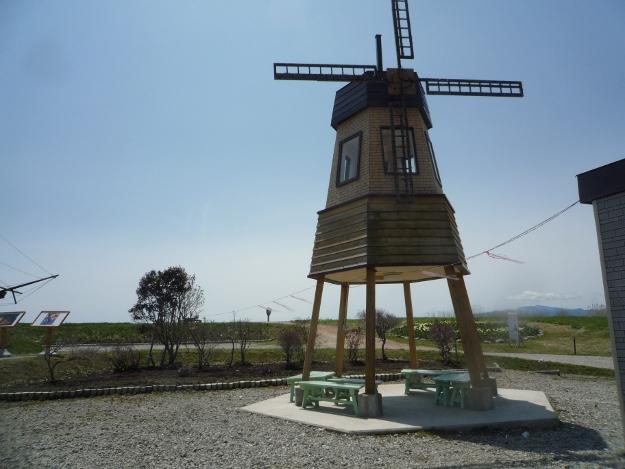 道南のチューリップ畑といえばココ!オランダ尽くし「サラキ岬」