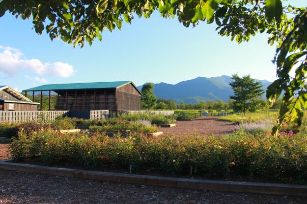 草原が波打つ!? 北海道ガーデンショー会場「十勝千年の森」