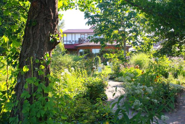 コーンが緑のバラソフトもオススメ! 温かく感じる「紫竹ガーデン」