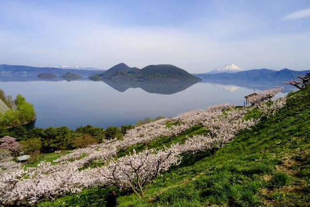 300本の梅が彩る!洞爺湖と羊蹄山を望める絶景スポット「壮瞥公園」