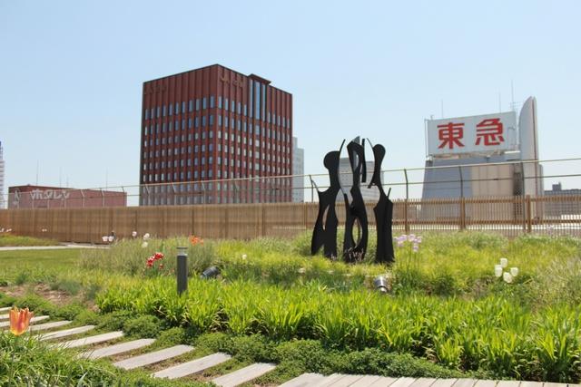 札幌駅前に北海道の広大な草原が?! 珍しい屋上庭園そらのガーデン