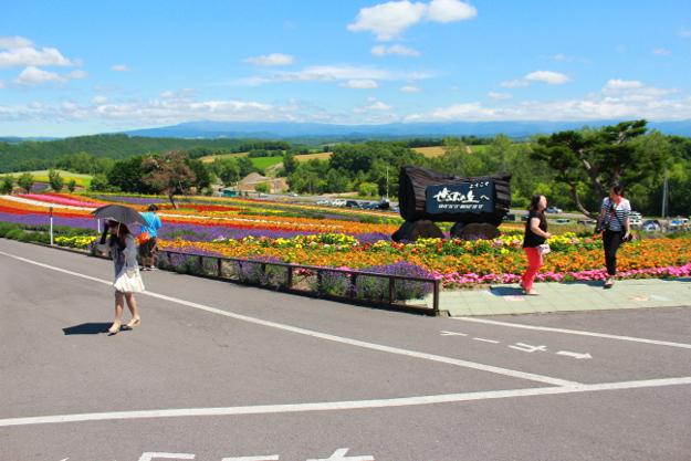 花畑の曲線美が印象的な美瑛の丘「ぜるぶの丘」