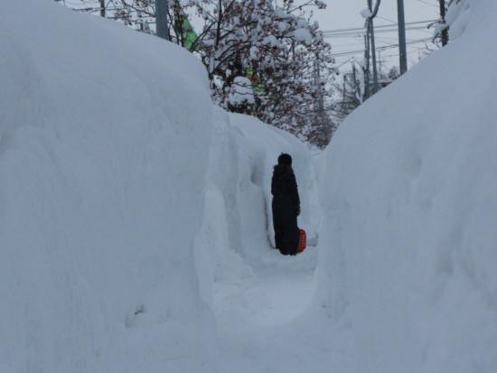 緊急ルポ:もはや雪害!豪雪で集中攻撃される岩見沢の実情