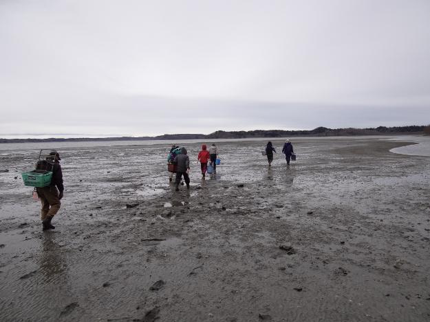 大物がゴロゴロ!厚岸湖であさり掘り体験ツアー