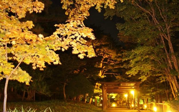 函館で紅葉ライトアップを見るならここ!見晴公園「香雪園」