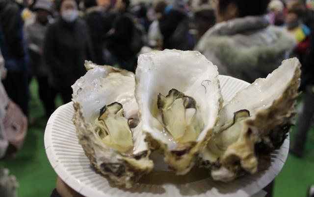 イベントでも長蛇の列!『海峡育ち』知内産カキの美味しさの秘密とは!?
