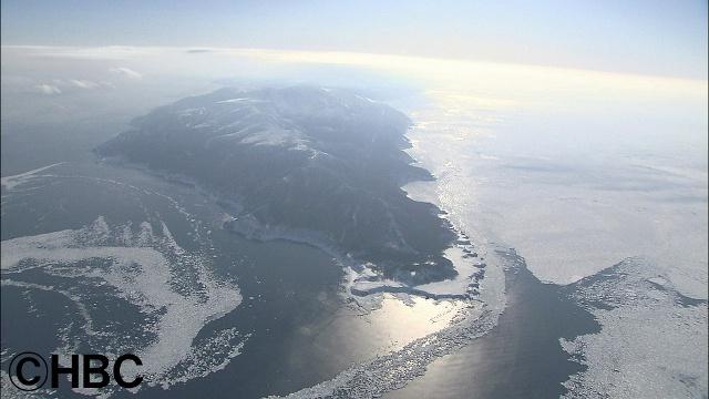 知床・羅臼の海で起こる「死滅回遊」の謎を世界で初めて解明!?