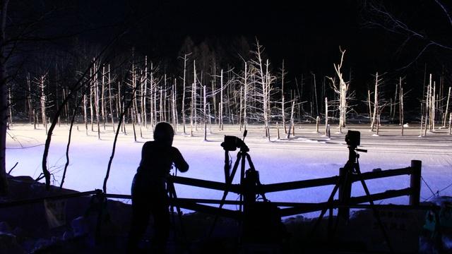 美瑛「青い池」でライトアップ始まる!冬の夜に青い池という新提案
