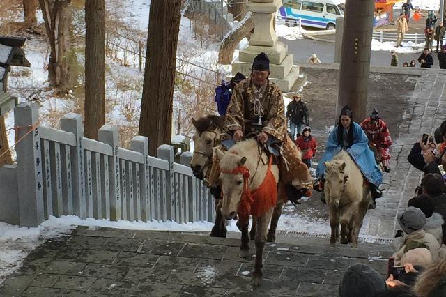 どさんこが石段を駆け上る!函館八幡宮お正月名物「騎馬参拝」