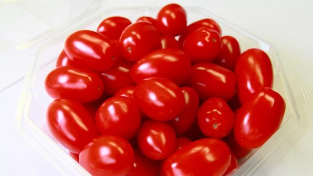 まるでブドウ!最高糖度11の甘すぎるミニトマト「純あま」をご存知?