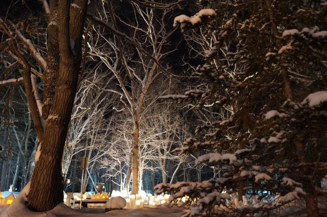 夜でも天然ものが見られる!弟子屈町「ダイヤモンドダストin Kawayu」