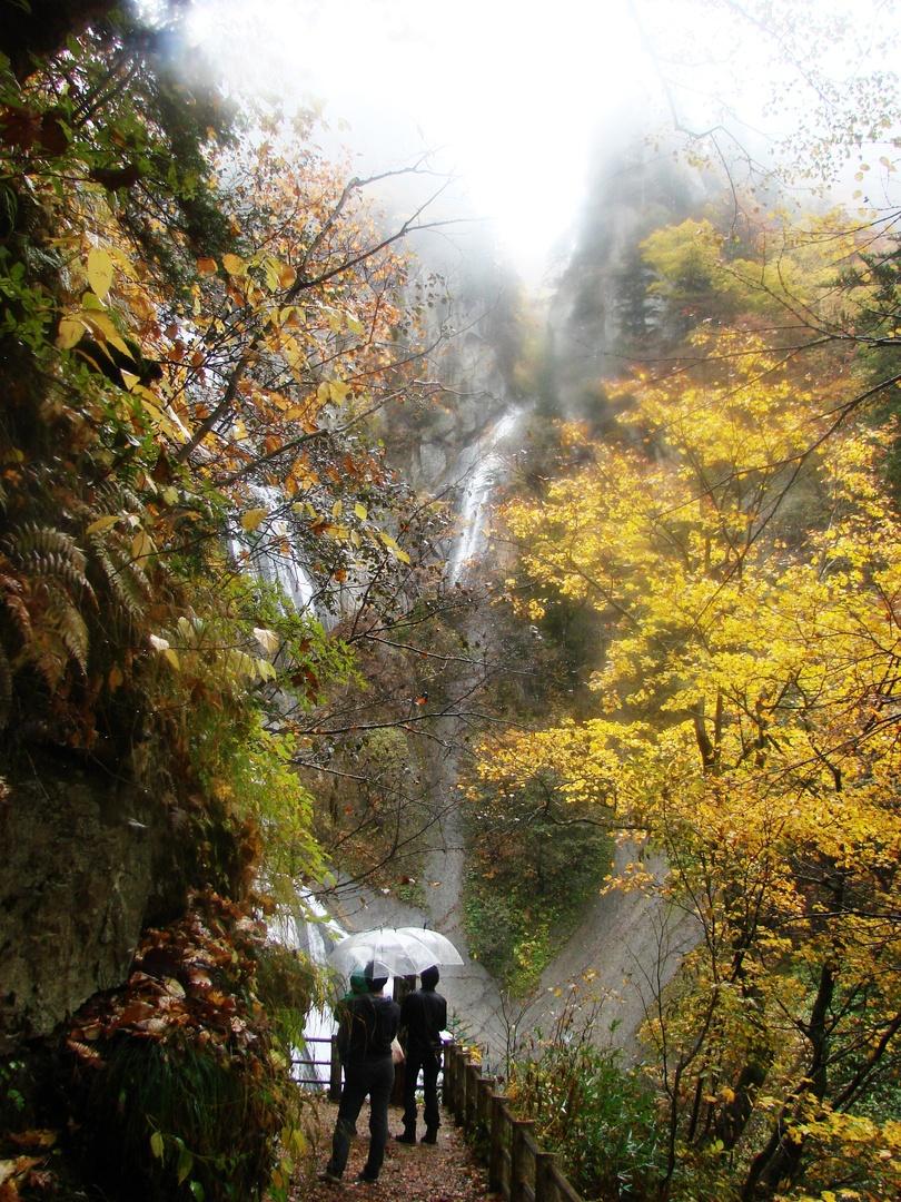 5年ぶりに復活した幻の名瀑!天人峡「羽衣の滝」はどう変わった?