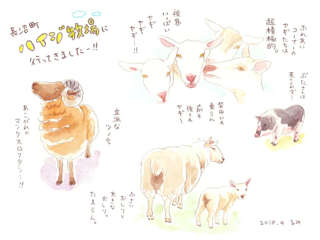 敷地面積100haのハイジ牧場で哺乳体験・乳しぼり体験をしてみよう!!