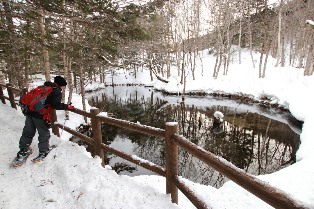 冬の「神の子池」はどうなってるの?スノーシューを履いて行ってみた
