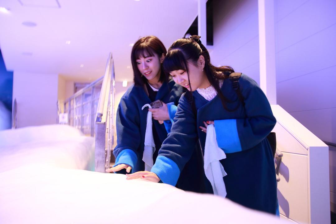 「オホーツク流氷館」で名勝天都山の眺望を楽しみ、本物の流氷に触れよう