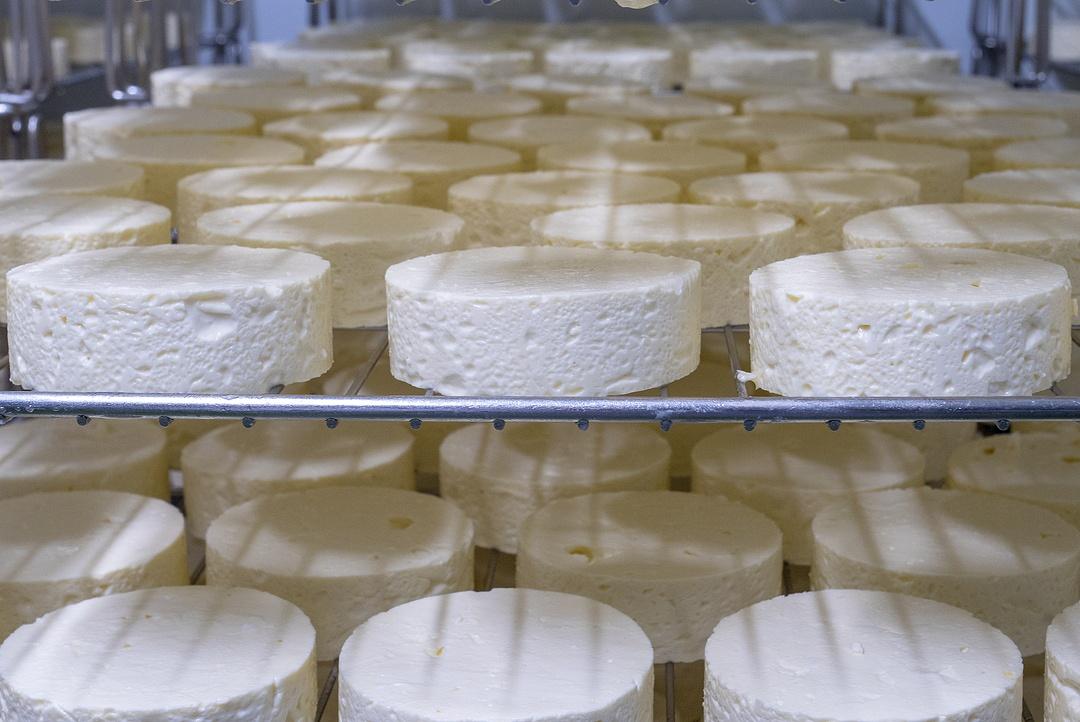 北海道で最初のチーズ工場が誕生した地・安平町で再びともるチーズの灯