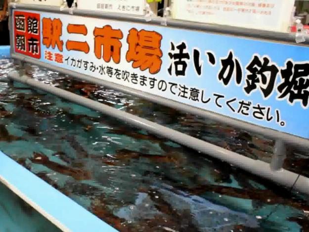 釣ったイカをその場で食べられる! 駅二市場活いか釣堀でイカ釣り体験