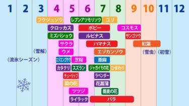 北海道花暦(花カレンダー)-いつどんな花が咲くの?
