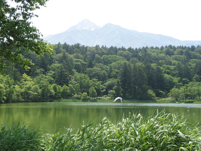 利尻の「姫沼」は人造湖だった!? 急坂を上って辿り着いた癒され空間