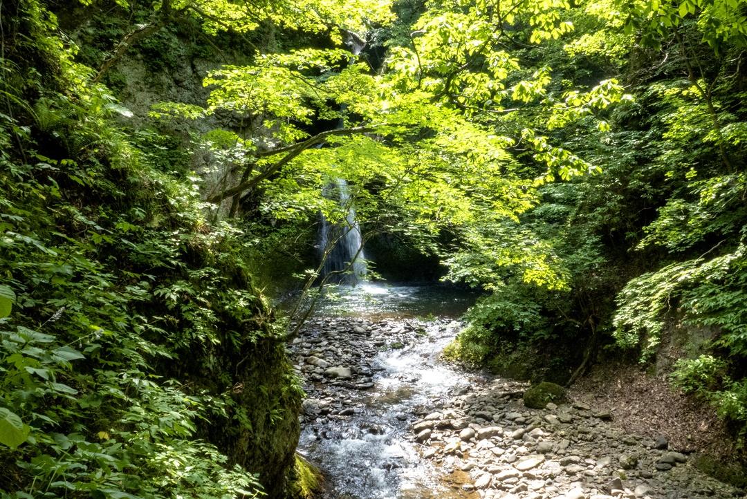 札幌市内にはこんなに滝がある!ぶらりと行ける札幌の滝7選