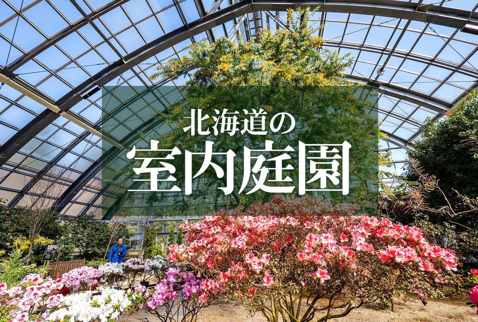 冬でもポカポカ 草木や花が楽しめる!北海道の室内庭園5選