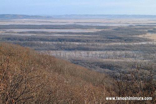国内の湿原8割以上がある湿原王国