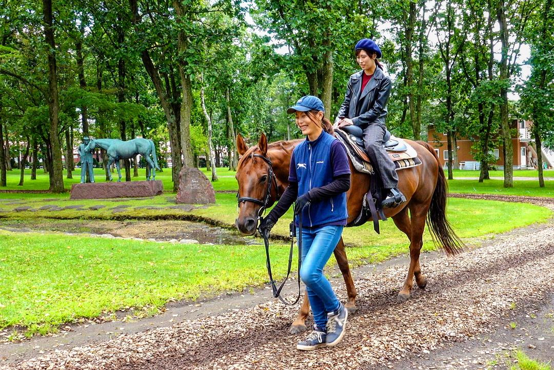 馬を見て、触れて、仲良くなろう!苫小牧市「ノーザンホースパーク」