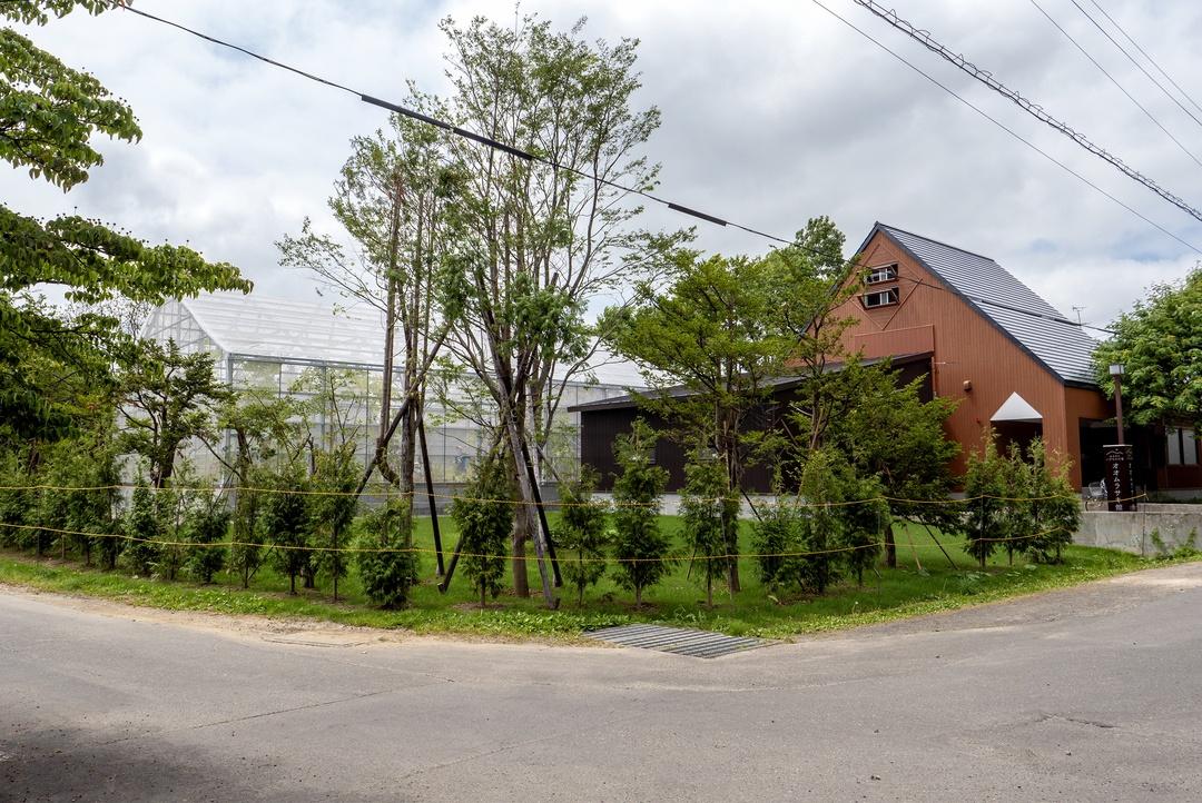 国蝶オオムラサキ道内東限の栗山町に「オオムラサキ館」がオープン