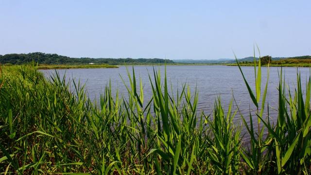 海とわかれたりつながったり。美しい響きをもつ「パシクル沼」の秘密
