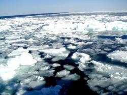 流氷って何?冬のオホーツク海を埋め尽くす氷原のメカニズム
