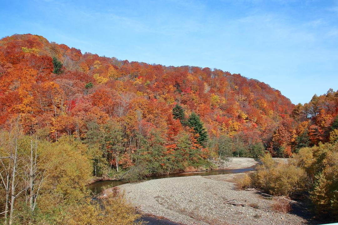 渓谷、ダム、クライマックスは大滝!秋に巡る森町の景勝地「鳥崎八景」