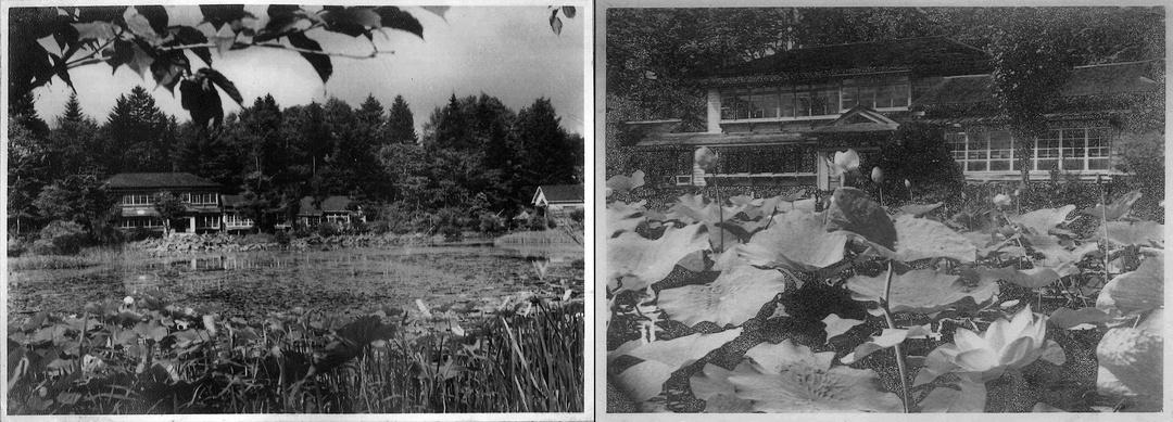 鶴が体を癒していたから鶴の湯温泉?道内で2番目に古い安平町の温泉