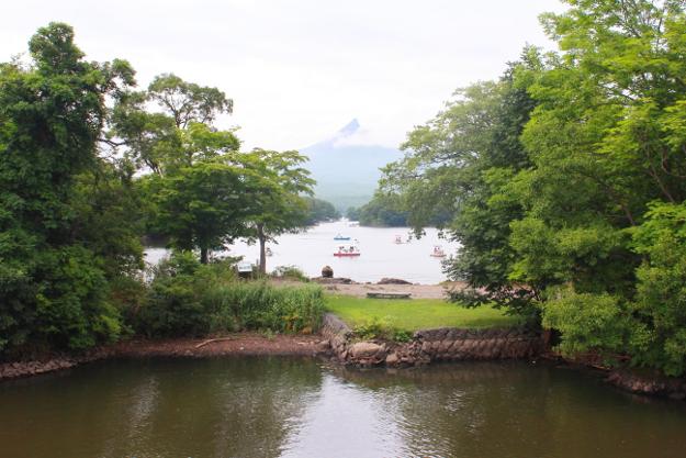 コレが大沼公園の楽しみ方! 「島めぐり」+「遊覧船」で自然と触れ合う