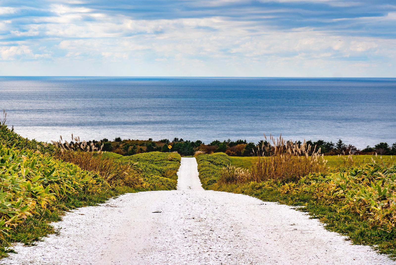 サハリンも望む3㎞の絶景ルート!稚内宗谷丘陵「白い道」の正体とは?